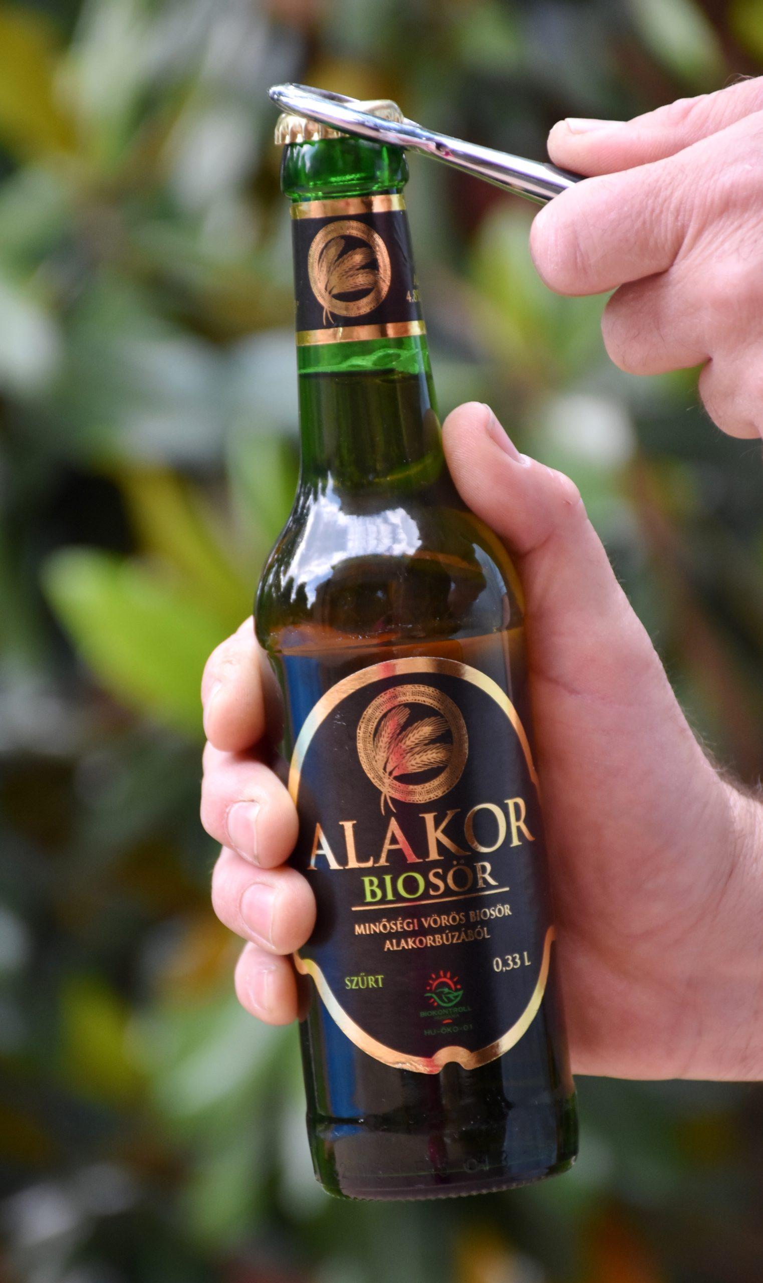 Paleo sör