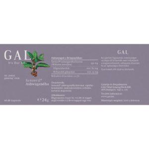 GYKGAAW06001 2
