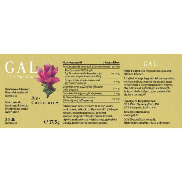 GYKGABC03001 2