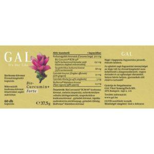 GYKGABCF06001 2