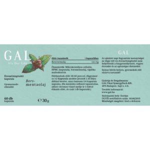 GYKGABM06001 2