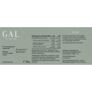 GYKGASHI06001 2