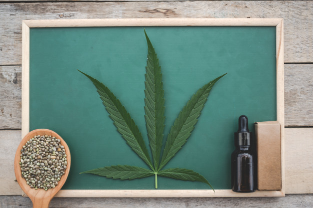 cannabis cannabis seeds cannabis leaves cannabis oil placed green board wooden floor 1150 18864